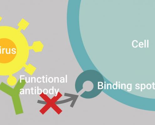 c-pass mechanism